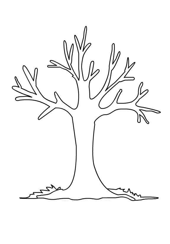 Ağaç Kalıbı