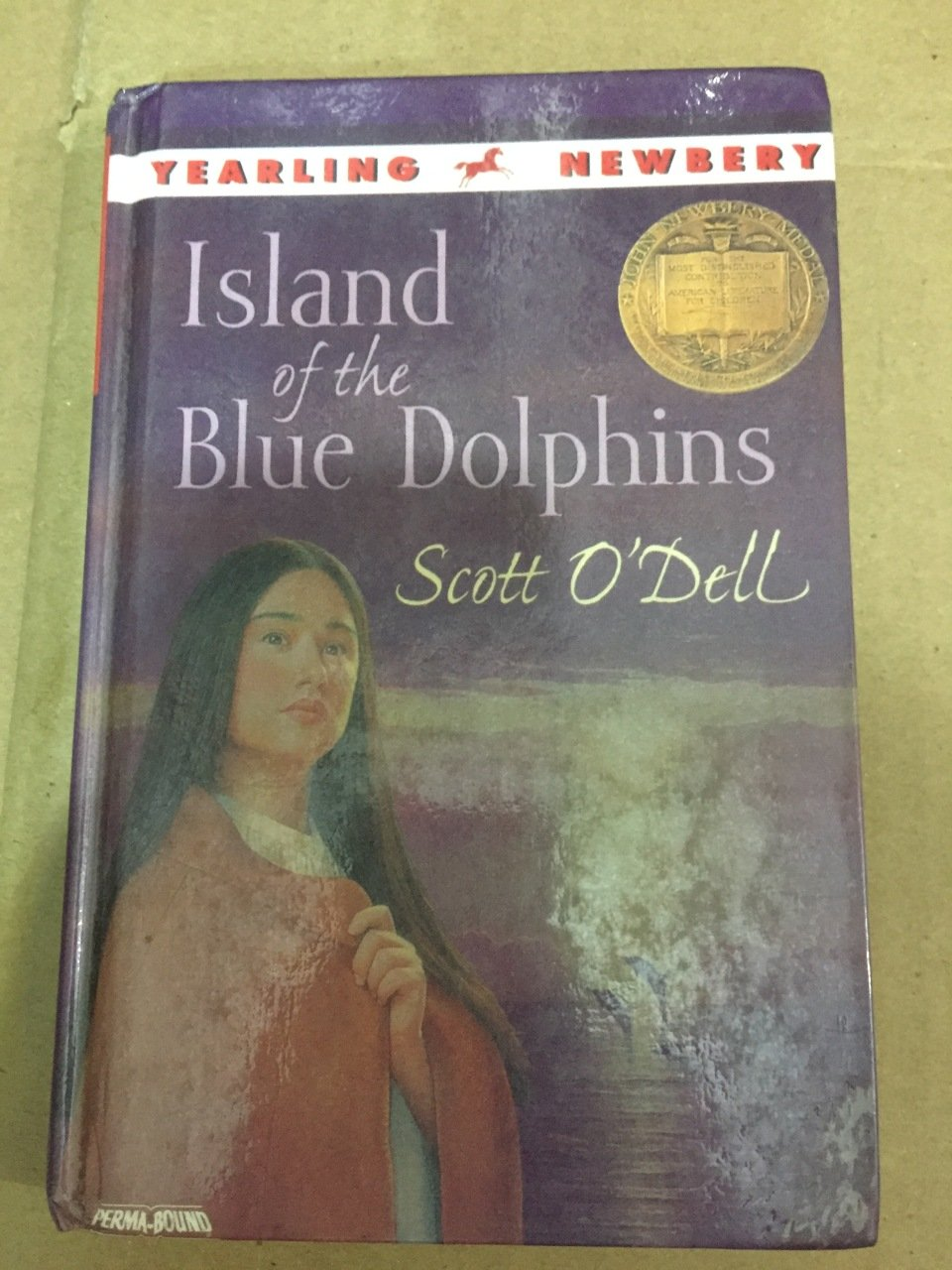 bravery in the book the island of the blue dolphins by scott odell Island of the blue dolphins book trailer brandon arevalo island of the blue dolphins, by scott o'dell (mpl book trailer #91) - duration: 1:11.