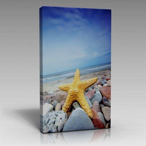 Deniz Yıldızı Tablo